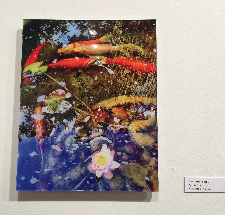 Koi/Lily Pond/Triton Museum