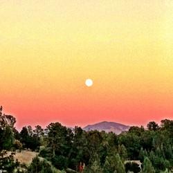 Mt Diablo Moon