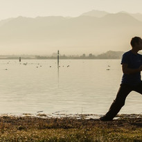 Wing Chun flow am See