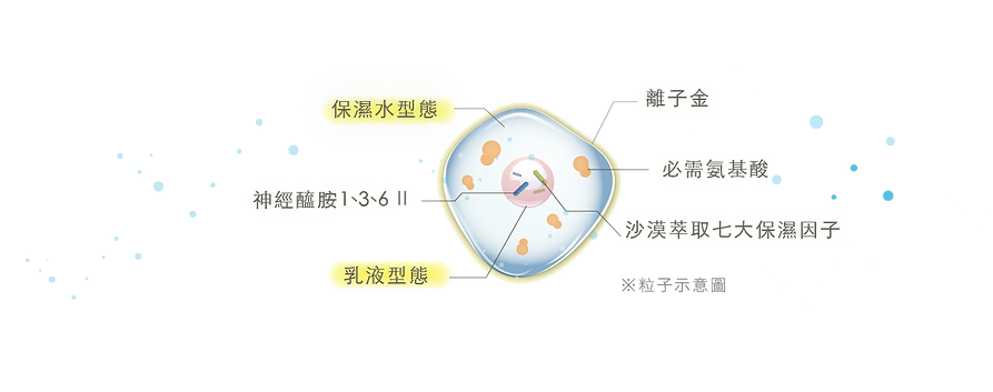 粒子-03.png