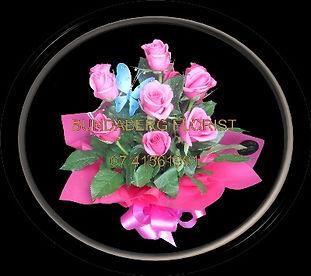 Pink Roses, flowers bundaberg,