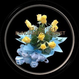 Bear, Roses, Baby Boy ,Bundaberg Flowers,