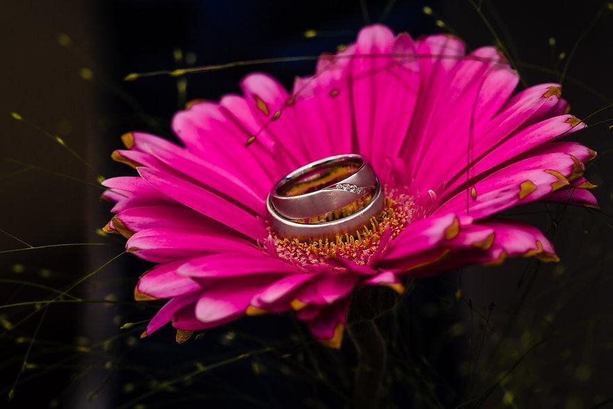 heiraten-fotograf-hochzeit-ringe.jpg