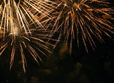5 Simple Ways To Prepare Your Puppy For Bonfire Night