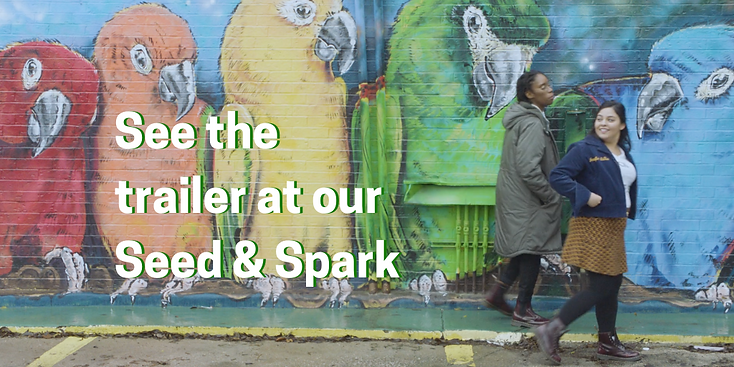 Visit our Seed & Spark.png