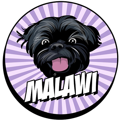 Malawi: Mzuzu Co-Op FT