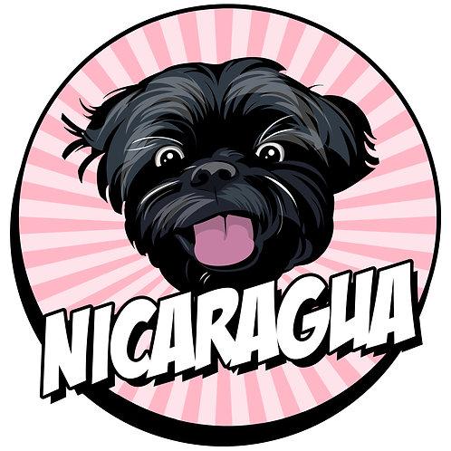 Nicaragua: Limoncillo Red Pacamara