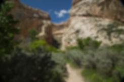 Box-Canyon-Trail_1.jpg