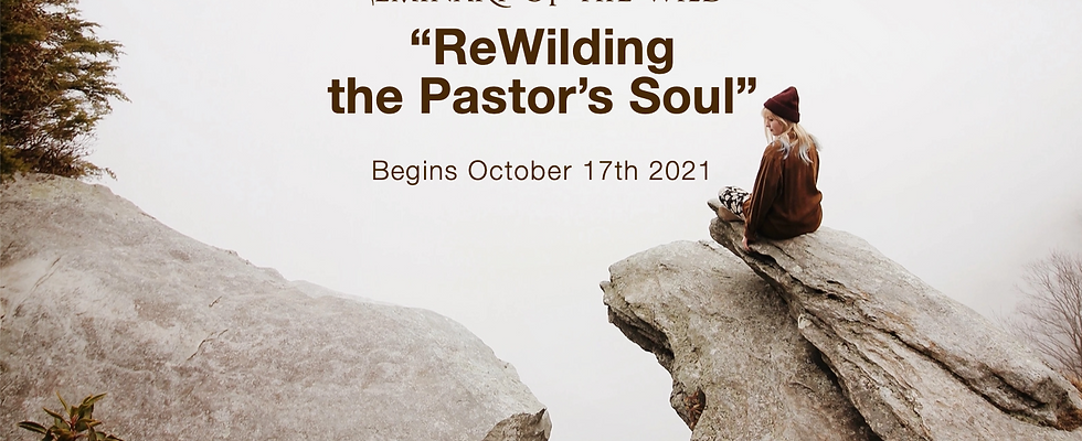 """""""Rewilding The Pastor's Soul"""" Eco-Ministry Certificate Yearlong"""