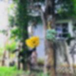 IMG-3106.jpg