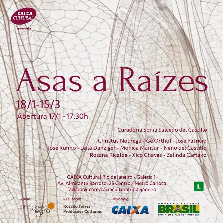 Asas a raízes | Caixa Cultural, Rio de Janeiro