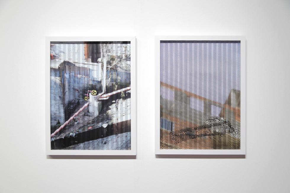 Jardins do Líbano, fotografia e vidro canelado, 70 x 50 cm, série 6 imagens.