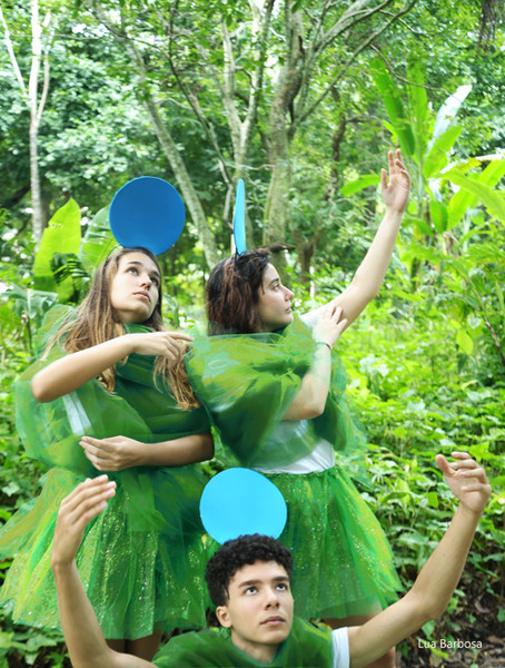 A indiferença do verde e a serenidade do azul - foto 8 - The indifference of green and the serenity of blue - Photo 8