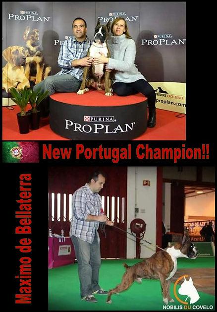 Mediterranean Winner Oporto 2015