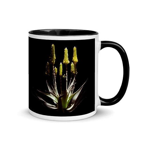 Caddelle Aloe Mug 4