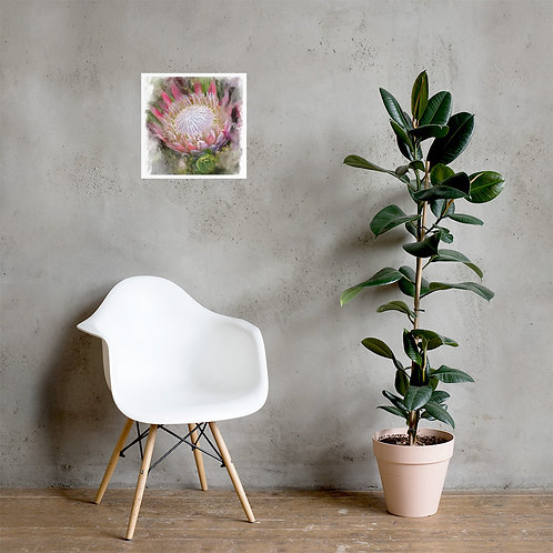 King Protea Photo paper poster