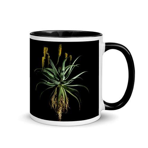 Caddelle Aloe Mug 1