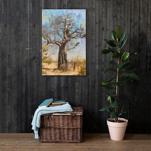 Baobab art Canvas