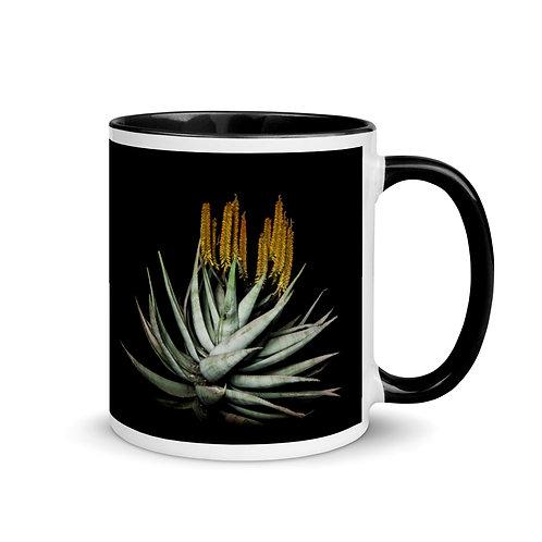 Caddelle Aloe Mug 3