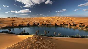 El Bahariya Oasis, Western Desert, Egypt