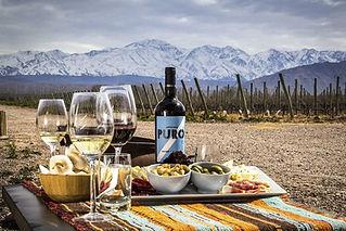 Mendoza Winery Argentina