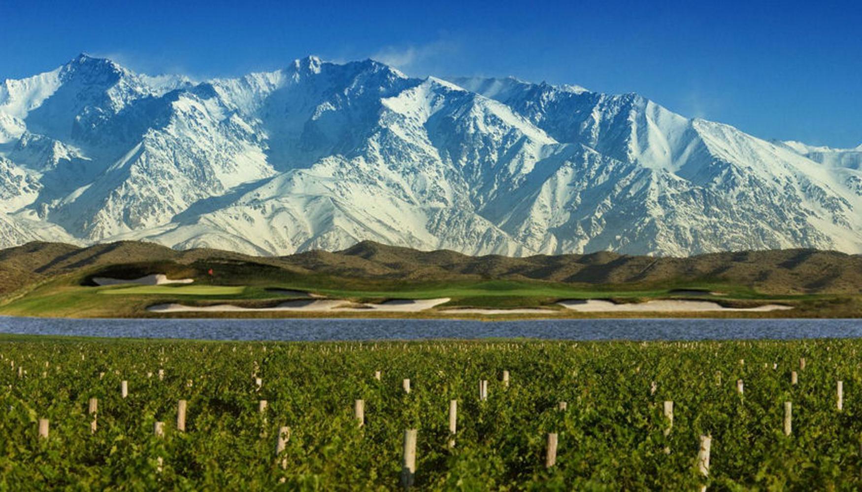 Uco Valley vineyards, Mendoza Argentina
