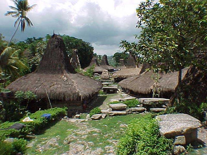 Savu Island Village