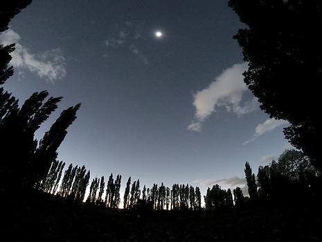 Observation site, Fortin Noguiera, Argentina, 2020