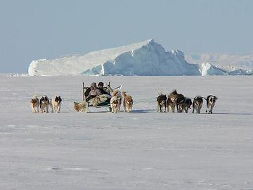 Inuit Greenland Dog Sled