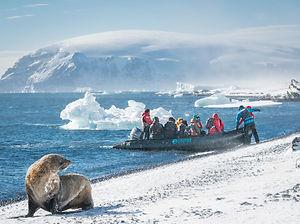 Falklands,-South-Georgia,-Ant-Peninsula-