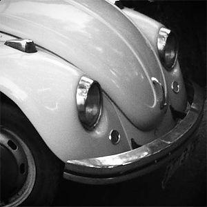 19B.Escarabajop.jpg