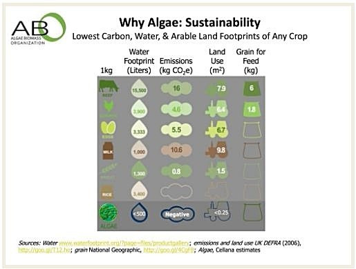 Algae grow extremely fast, and need enormous quantities of carbon dioxide for photosynthesis. This makes them ideally suited to consume the carbon dioxide emitted from power plants or other processes before the gas escapes into the atmosphere. It also means that areas with large carbon dioxide supplies might be well-suited to grow algae.
