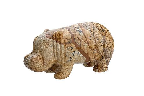 Picture Jasper Hippo