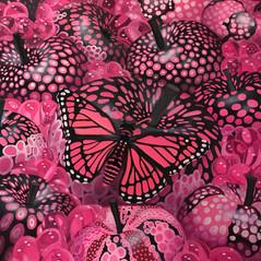 Temptation Fluo Pink