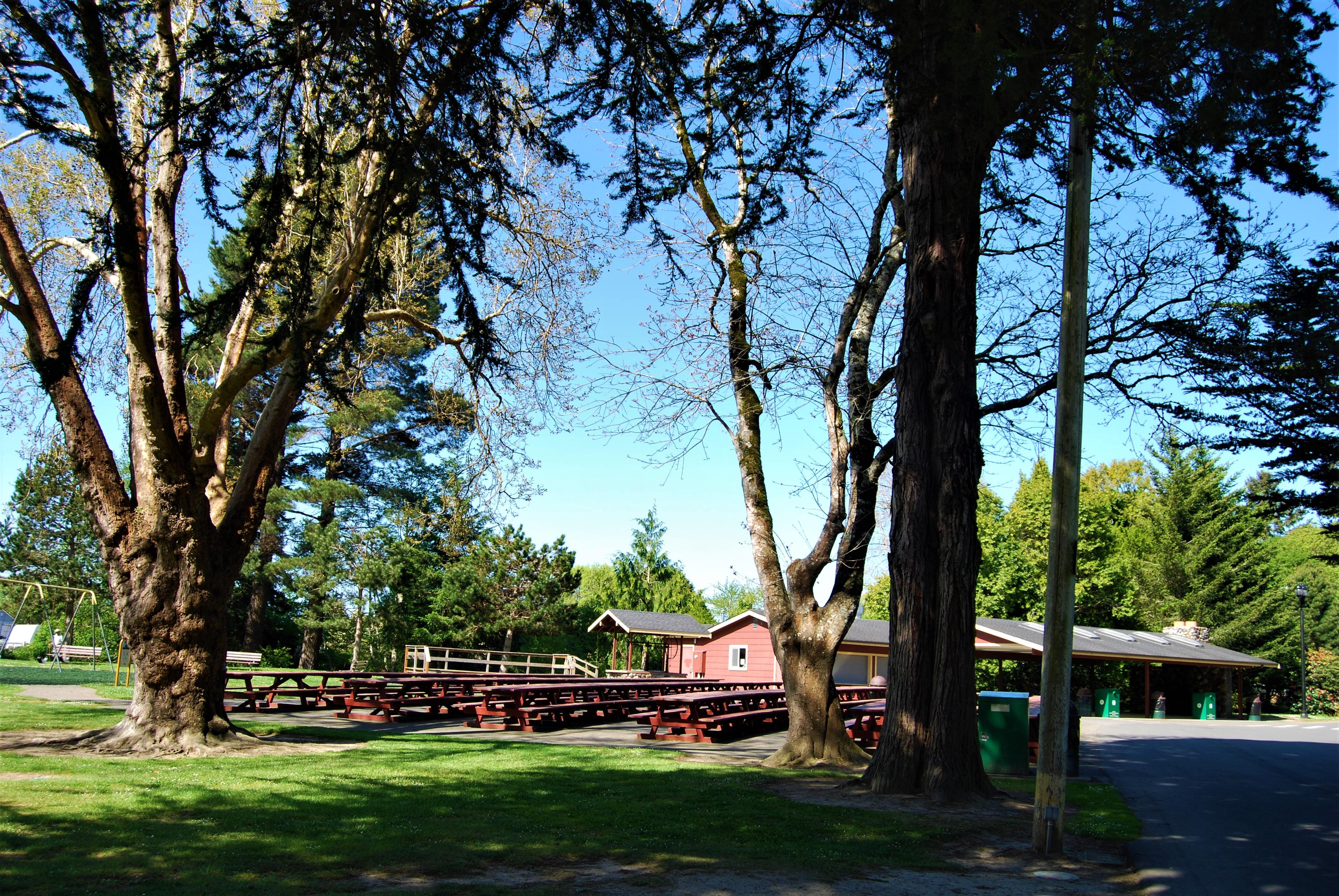 Rohner Park, Fortuna