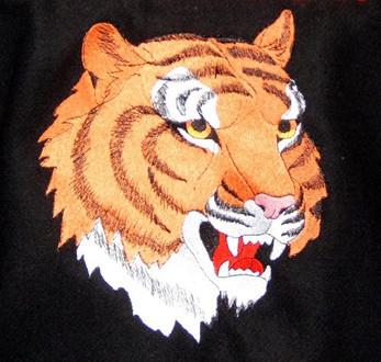 Varsity Jacket Mascot