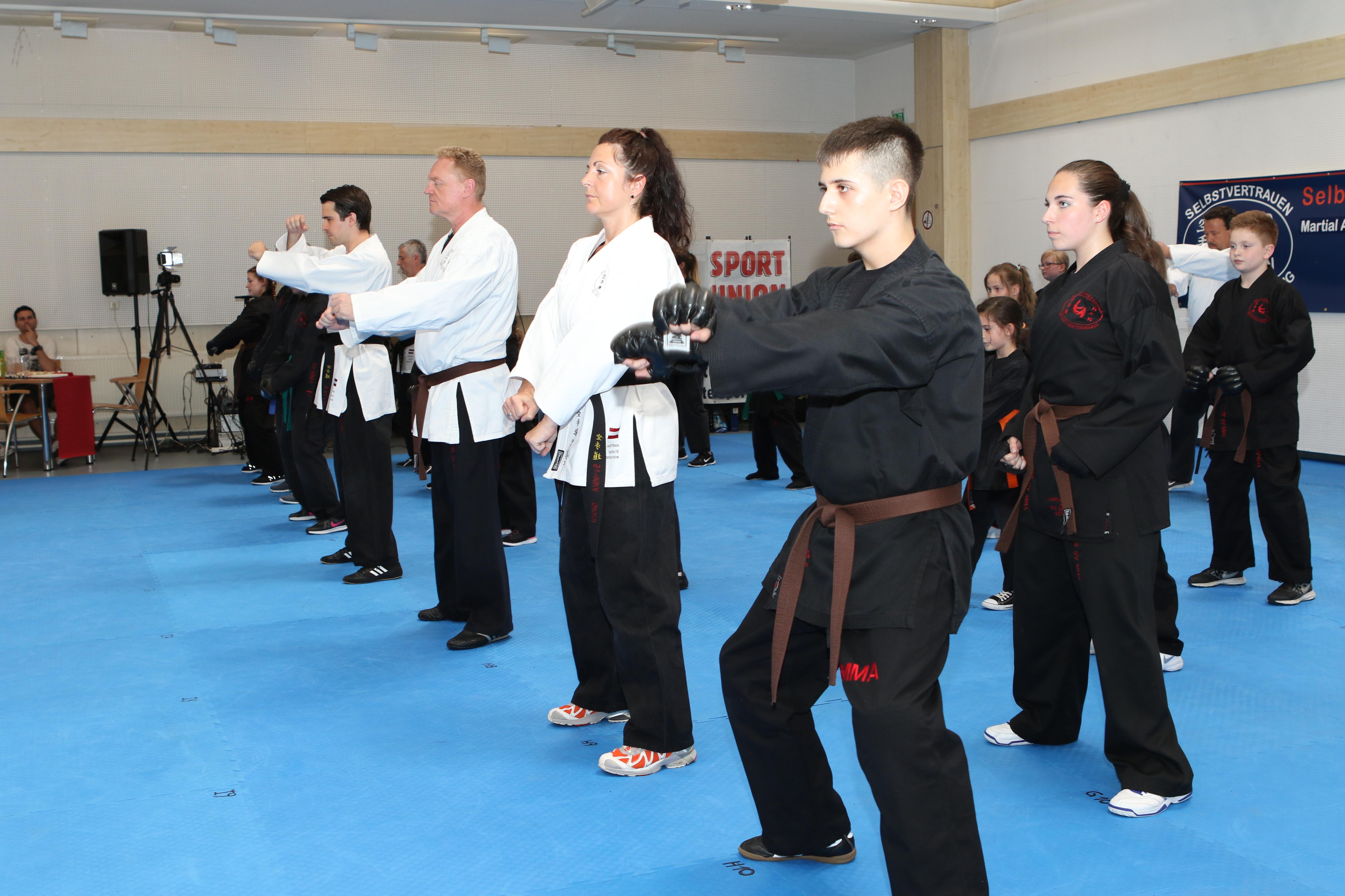 Song Karate (2)