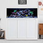 SR Pro 80 Gallon AIO Aquarium_ APS Stand