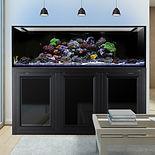 internal overflow INT 200 Gallon Aquarium with APS black Stand saltwater fish kit