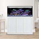 external overflow EXT 100 Gallon Aquarium aps White saltwater fish kit