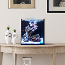 Fusion Pro 10 Gallon AIO Aquarium Deskto