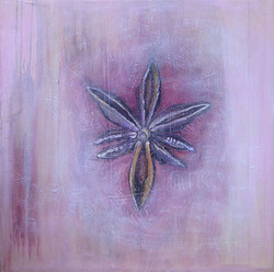 pinkstarweb