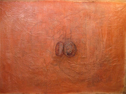 acorn_homageweb
