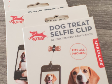 6 TIPS to WIN A FREE SELFIE CLIP!!!