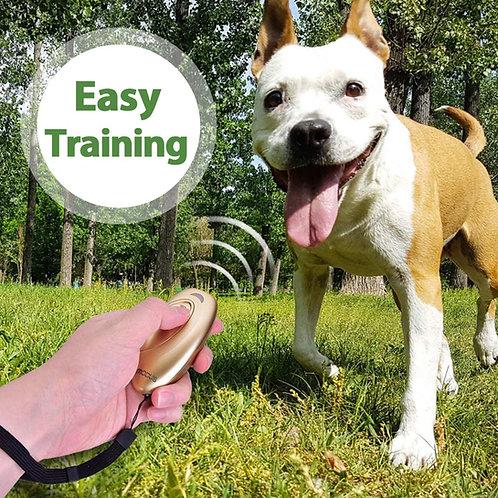 UltraSonic Training Device
