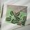 Prayer Plant A6 mini postcard print with an owl grey envelope