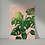 Vintage style unframed print of a Swiss Cheese Plant (Monstera Deliciosa) from the Orla Ros Retro House Plants range