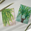Two retro inspired botanical mini print postcards of a Boston Fern and a Yucca Plant