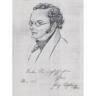 Teltscher ?: Line drawing of Schubert, 1825
