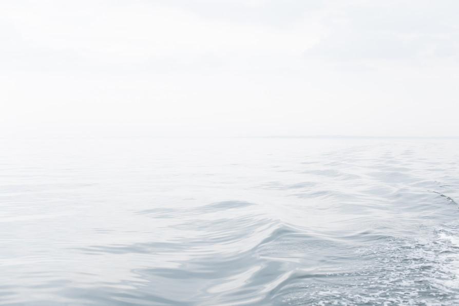 Horizon no. 627